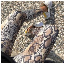 Colanti snake